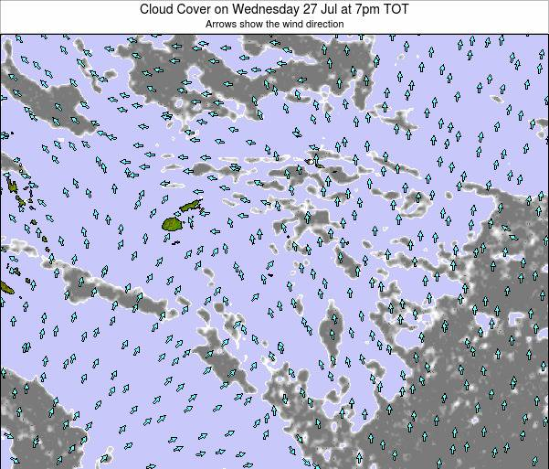 Tonga Cloud Cover on Thursday 31 Jul at 7pm TOT
