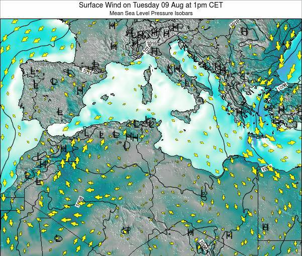 Tunisia Surface Wind on Friday 14 Mar at 7am CET