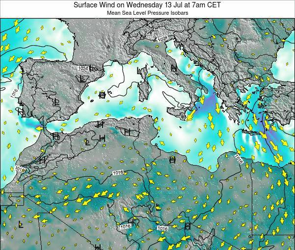 Tunisia Surface Wind on Tuesday 29 Jul at 1am CET