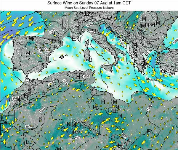 Algeria Surface Wind on Friday 24 May at 1am CET