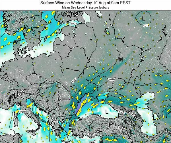 Ukraine Surface Wind on Monday 24 Jun at 9am EEST