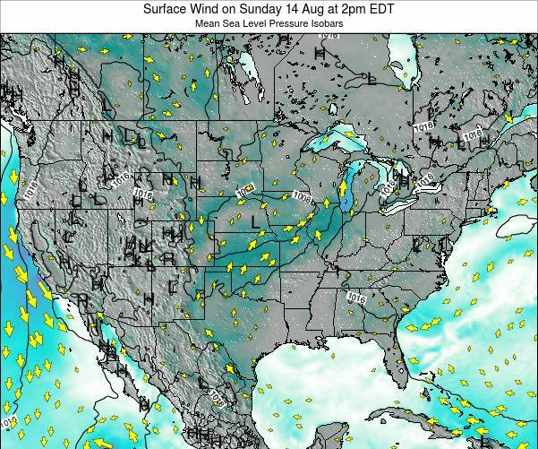 United States Surface Wind on Saturday 25 May at 8am EDT map