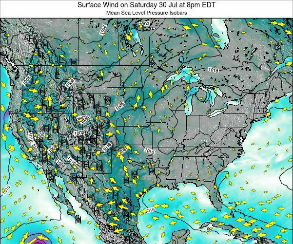 United States Surface Wind on Tuesday 30 May at 2pm EDT
