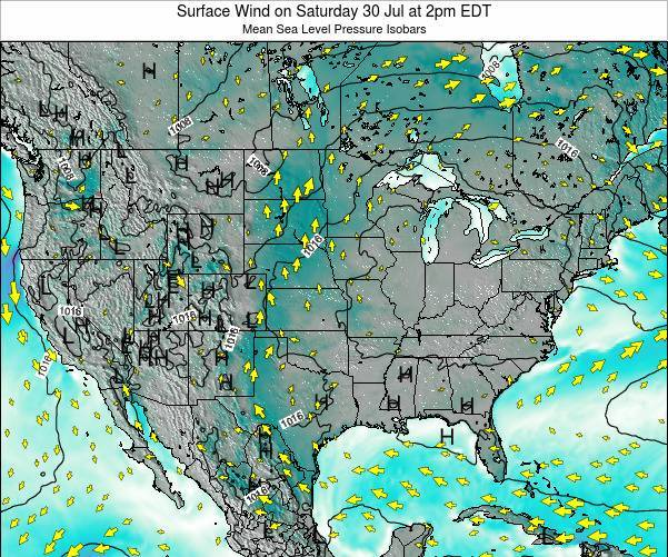 United States Surface Wind on Sunday 03 Aug at 8am EDT