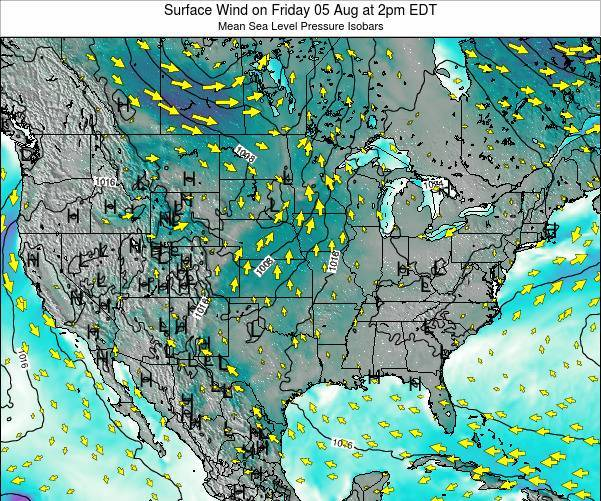 United States Surface Wind on Sunday 09 Aug at 2pm EDT