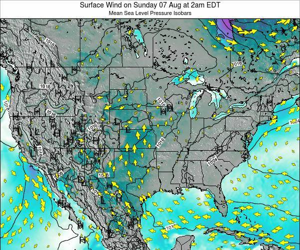 United States Surface Wind on Friday 24 May at 8am EDT map