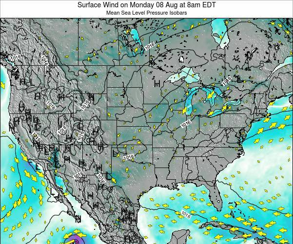 United States Surface Wind on Thursday 24 Jul at 2pm EDT