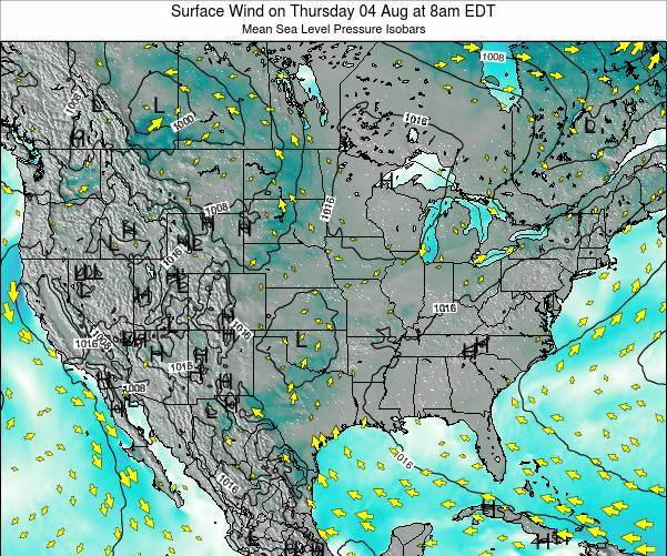United States Surface Wind on Wednesday 11 Dec at 7pm EST