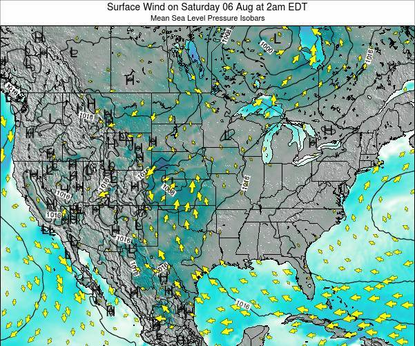 United States Surface Wind on Wednesday 29 May at 2pm EDT map