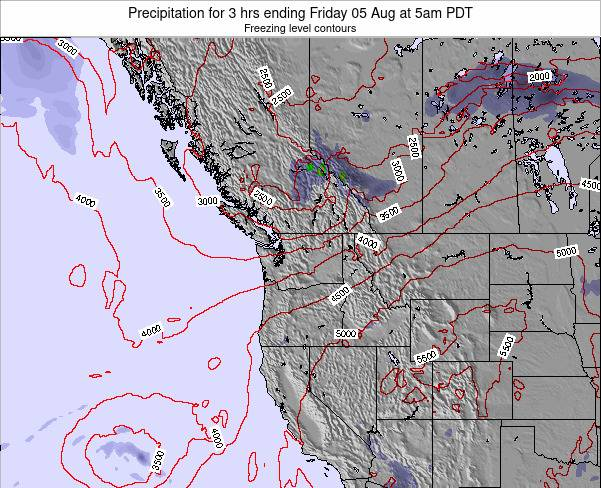 Washington Precipitation for 3 hrs ending Thursday 13 Mar at 11pm PDT