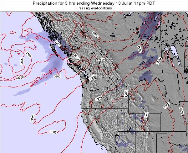 Washington Precipitation for 3 hrs ending Friday 20 Dec at 10am PST