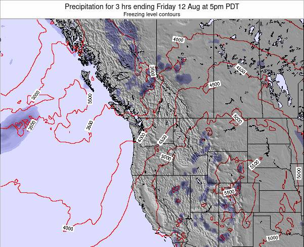 Washington Precipitation for 3 hrs ending Saturday 02 Aug at 11pm PDT