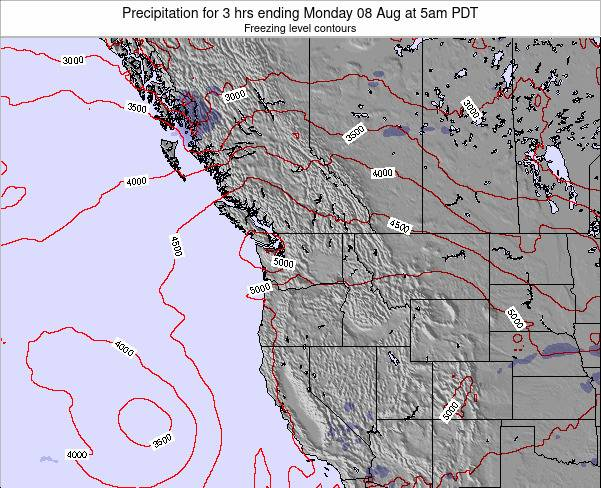 Washington Precipitation for 3 hrs ending Saturday 11 Jul at 5am PDT