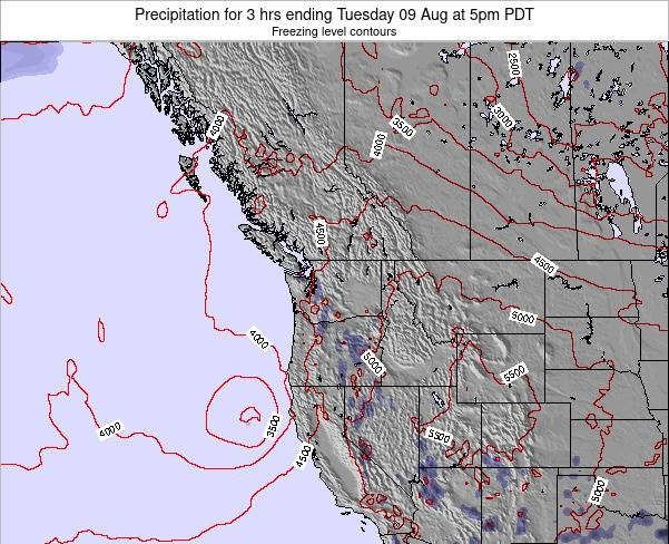 Washington Precipitation for 3 hrs ending Friday 07 Mar at 10pm PST