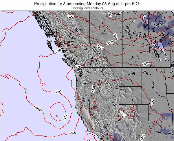 Washington Precipitation for 3 hrs ending Tuesday 24 Jan at 10pm PST
