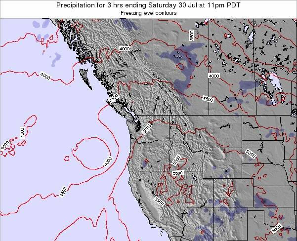 Washington Precipitation for 3 hrs ending Friday 24 May at 11am PDT