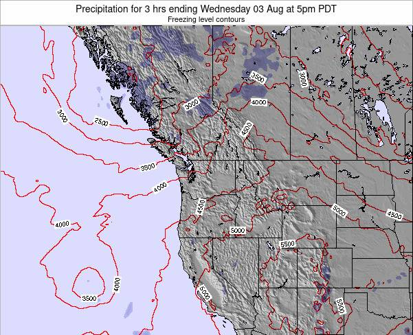 Washington Precipitation for 3 hrs ending Monday 28 Jul at 5pm PDT