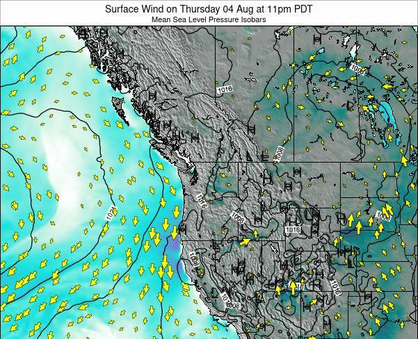 Washington Surface Wind on Thursday 23 May at 11pm PDT