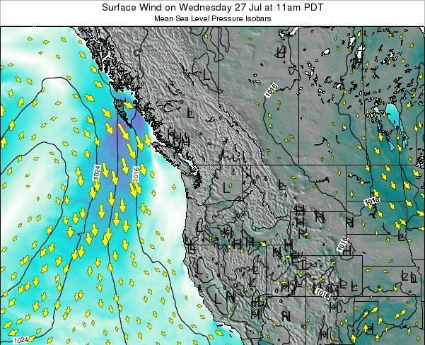 Washington Surface Wind on Thursday 23 May at 11am PDT