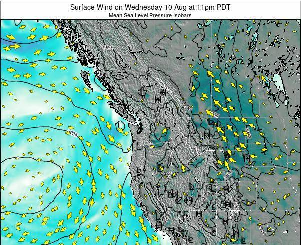 Washington Surface Wind on Monday 27 May at 11am PDT