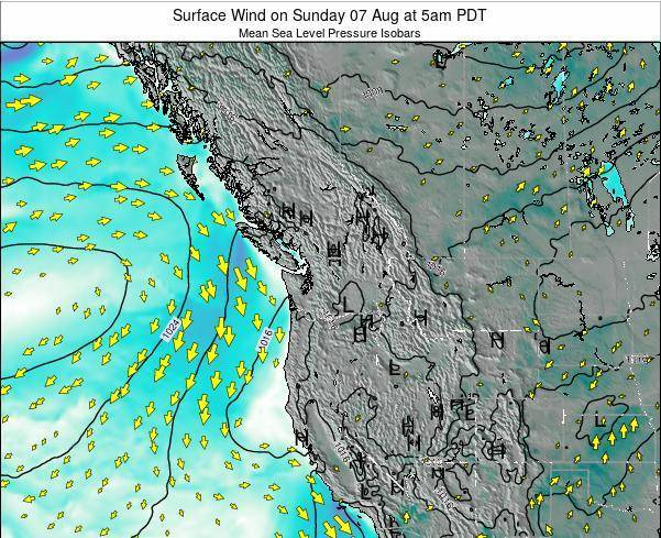 Washington Surface Wind on Wednesday 19 Jun at 11pm PDT