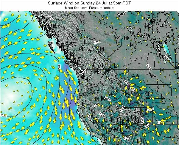 Washington Surface Wind on Monday 20 May at 11am PDT