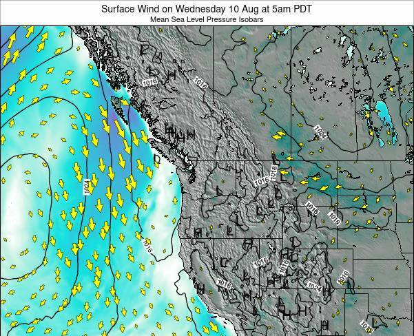 Washington Surface Wind on Sunday 26 May at 11pm PDT