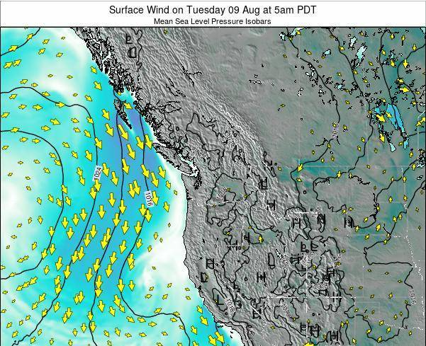 Washington Surface Wind on Thursday 24 Aug at 5am PDT