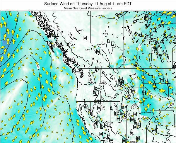 Washington Surface Wind on Tuesday 24 Dec at 10am PST