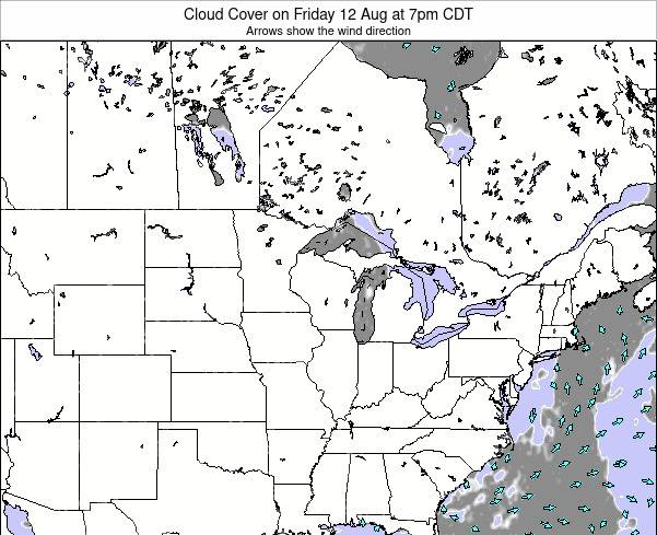 Minnesota Cloud Cover on Sunday 29 Jan at 12pm CST