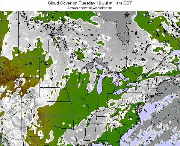 Michigan Cloud Cover on Saturday 25 May at 1pm CDT