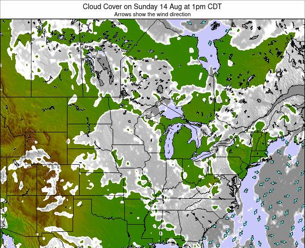 Minnesota Cloud Cover on Sunday 28 Jan at 12am CST map