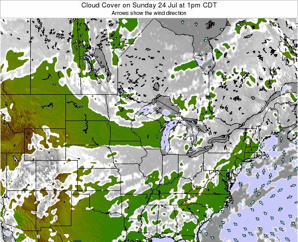 Michigan Cloud Cover on Thursday 20 Jun at 1pm CDT