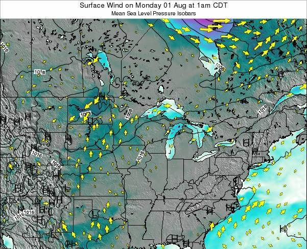 Minnesota Surface Wind on Saturday 01 Jun at 1pm CDT map