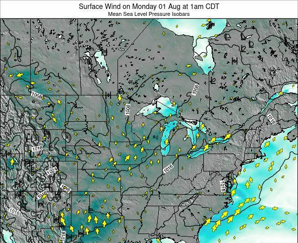 Minnesota Surface Wind on Sunday 19 May at 1am CDT map