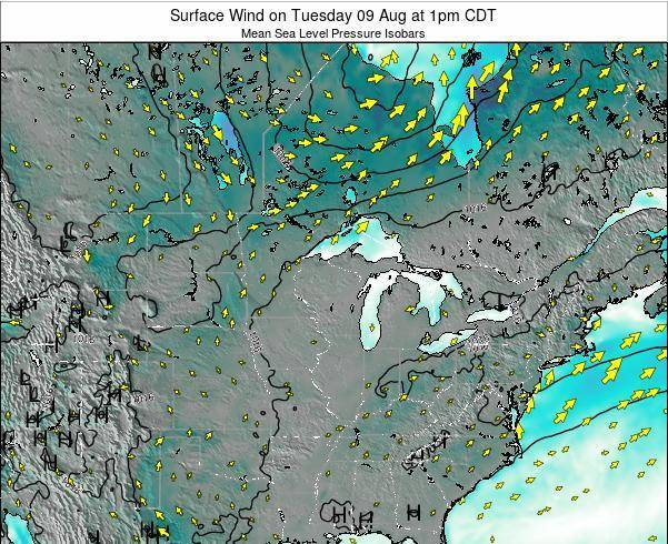 Michigan Surface Wind on Saturday 22 Jun at 7am CDT