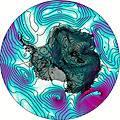 Antarctica Vent