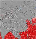 China Temperature della superficie del mare