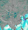 Chine wind map