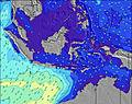 Timor wave height map
