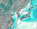 South Korea wind map