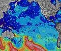 Pacific-Ocean wave height map